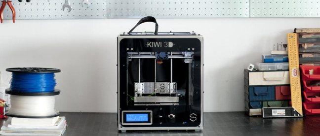 Kiwi 3D 4