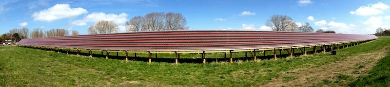 solar park 1