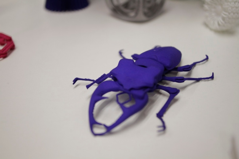 arte animali scarabeo