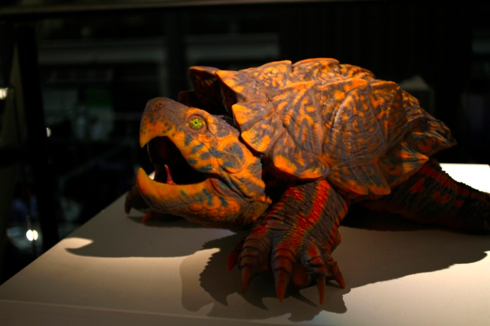 arte world turtle